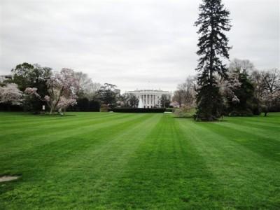 casa+blanca+presidente+estados+unidos