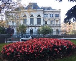 oviedo+flores+san+francisco