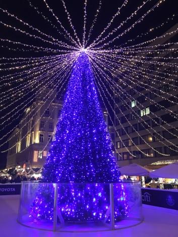 pino+navidad+budapest+plaza