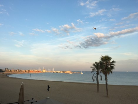 playa+barceloneta+barcelona