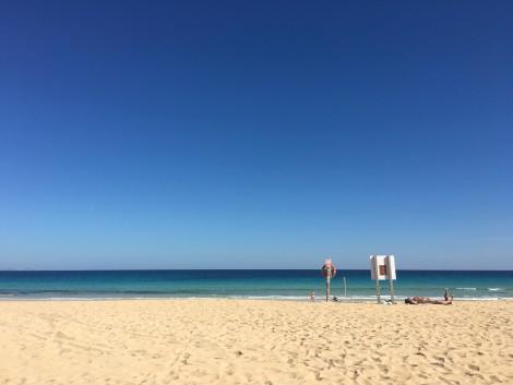 canarias+fuerteventura+isla+playa en la isla de fuerteventura