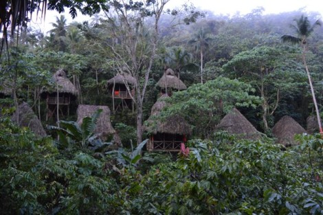 treehouse+village+republica+dominicana