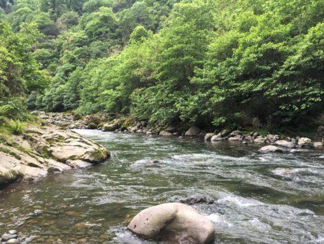 rio+georgia+batumi parque nacional en georgia