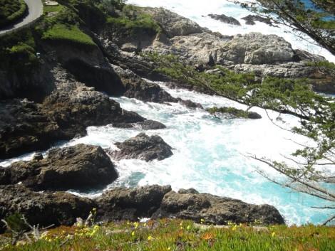 california+point+lobos+monterey+bay+aerea visitar monterey california