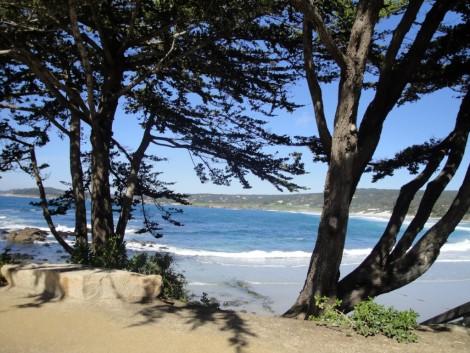 mar+monterey+bay+aerea visitar monterey en california