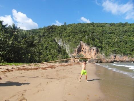 playa+palmera+fuerza+valle+republica+dominicana