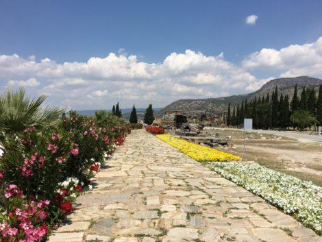 caminos+ruinas+pamukkale+flores