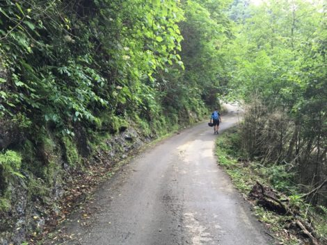 camino+chakvi+georgia+batumi parque nacional en georgia