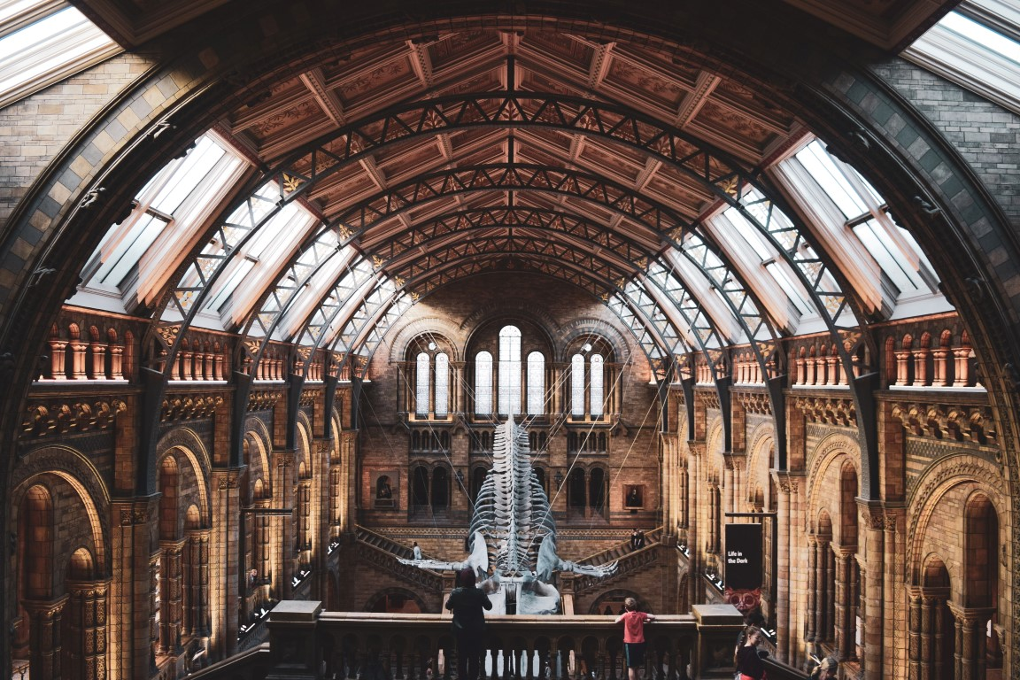 museo hisotria natural londres que ver en 4 dias